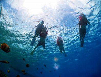 シュノーケル水中画像1